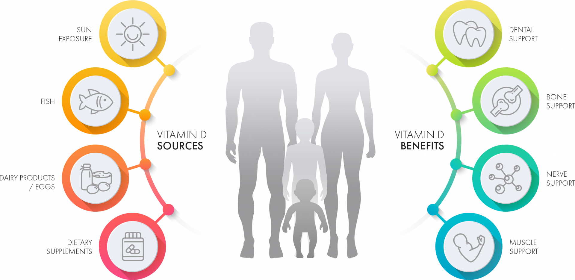 Real Promise Babe D3 Vitamin D Sources and Benefits Infographic